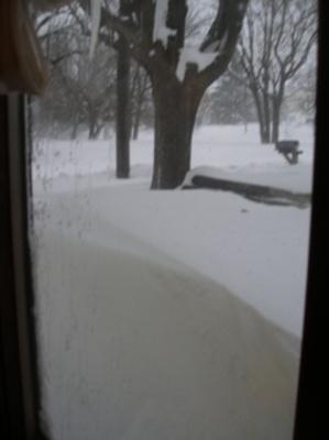 Feb. SnowStorm 2010 (96)a